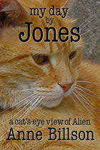 my day by jones the cat